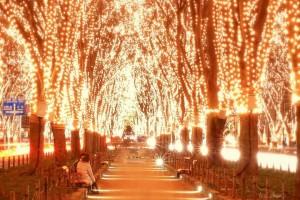 クリスマスイルミ仙台