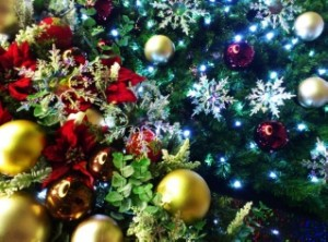 クリスマスアドベント1