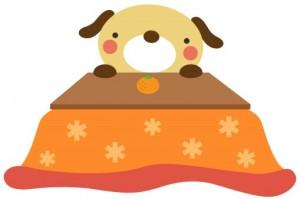 小型犬寒さ対策2