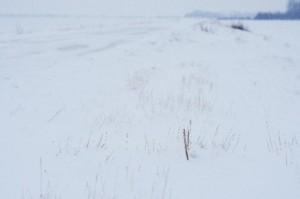 凍結道運転5