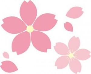 お花見お弁当3