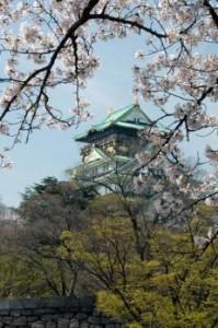 関西桜名所6