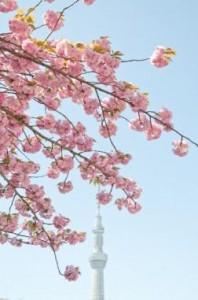 春東京デート1