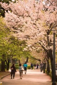 春関西デート1