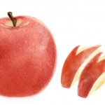 なにこれ可愛い!りんごの素敵な飾り切り集!動画で簡単カット!