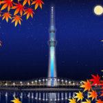 秋デートはこれで決まり!関東のオススメデートスポット!