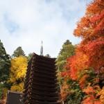 秋のデートはお楽しみたっぷり!関西のオススメデートスポット!