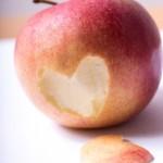 フルーツの定番りんご!知られざるカロリーや栄養・効能とは?