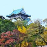 大阪の秋デートをもっと楽しむ!オススメ秋スポット情報まとめ!