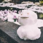 冬休みにおすすめのお出かけスポット!九州のおすすめ6選!